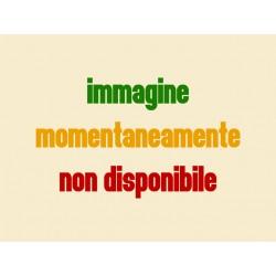 07a - Mascherina copristerzo grigia Vespa 50 Special completa di modanatura - R.O. Piaggio 143593
